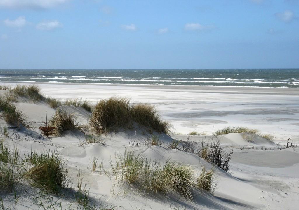 Bildungsurlaub 2021 Nordsee